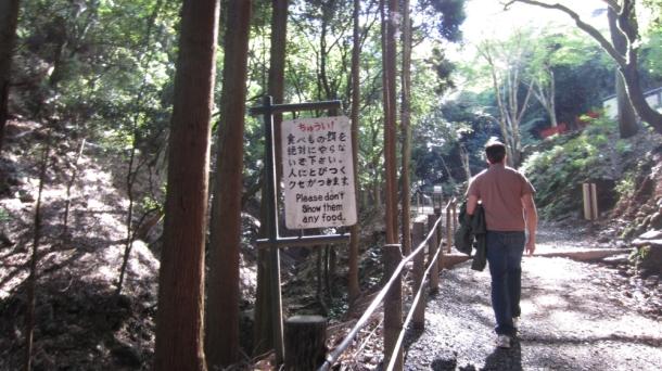 Kyoto045