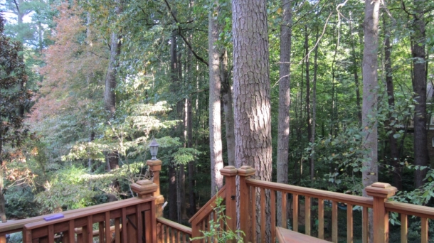 BackPorch02